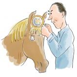 chifre cabeça cavalo